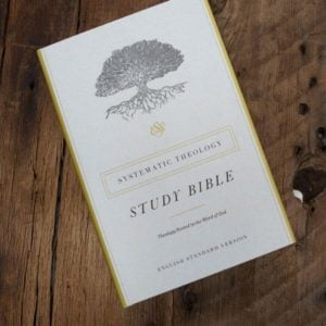 Christmas Gift Guide - ESV Bible