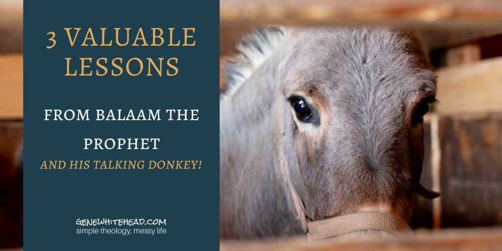 balaam the prophet and his talking donkey