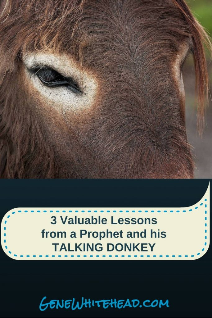 Balaam's way was greed, his error was compromise, and his doctrine was betrayal and corruption. These are the lessons of Balaam, and they're still infiltrating the church and individual lives thousands of years later. Here's how to deal with it.