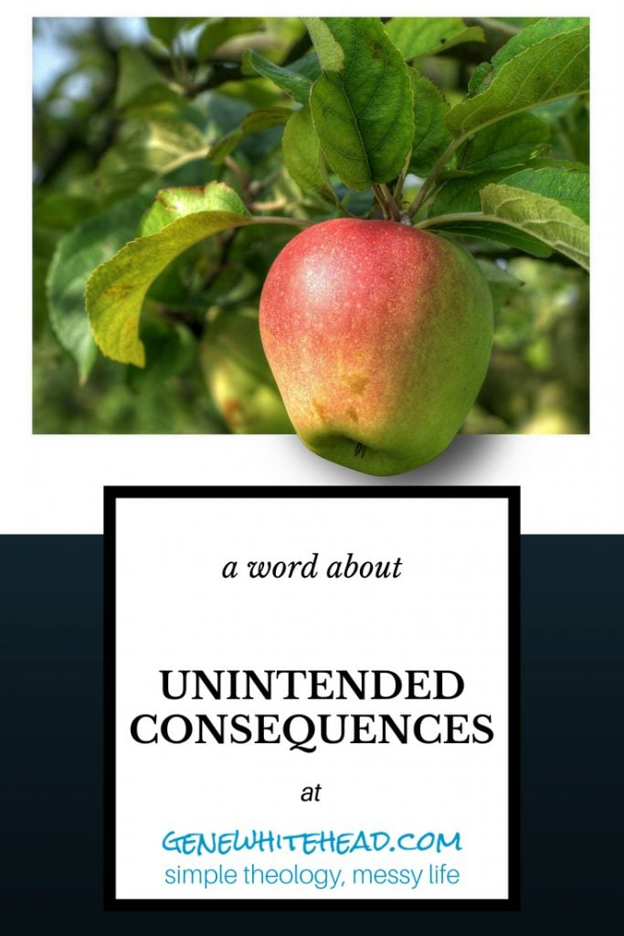 A word of caution about unintended consequences. Have you ever witnessed the unintended, unplanned fallout as a result of someone's actions? That should make us realize that when we take action, whether good or bad, there are consequences. #consequences #faith #sin