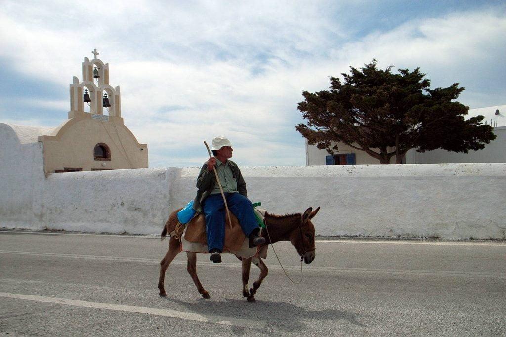 balaam talking donkey