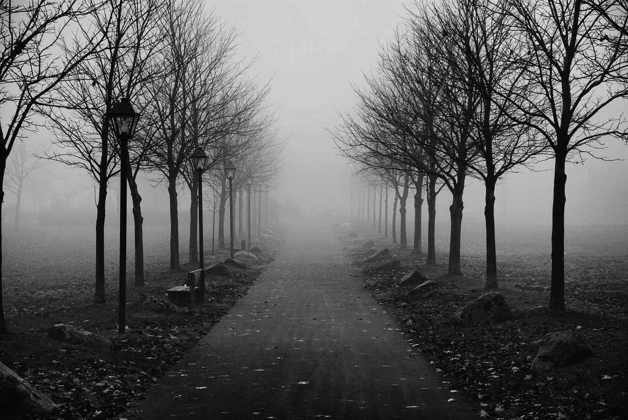 Following God Without Hesitation