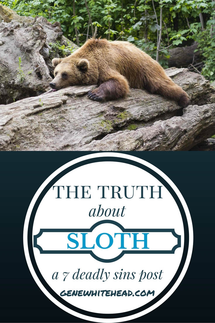 Laziness is one of the symptoms of sloth, but it doesn't take laziness to be slothful. In fact, one could be a total workaholic and slothful.