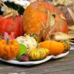 12 Thanksgiving Day Bible Verses Plus 5 Bonus Quotes