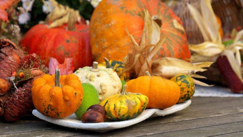 12 Bible Verses on Being Thankful (Plus 5 Bonus Quotes)